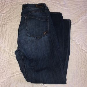 Express Denim Skinny Jean